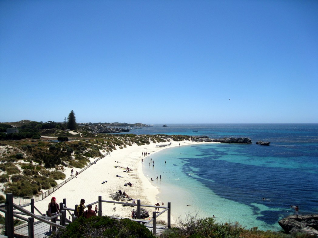 Beachgoers are spoilt for choice on Rotto